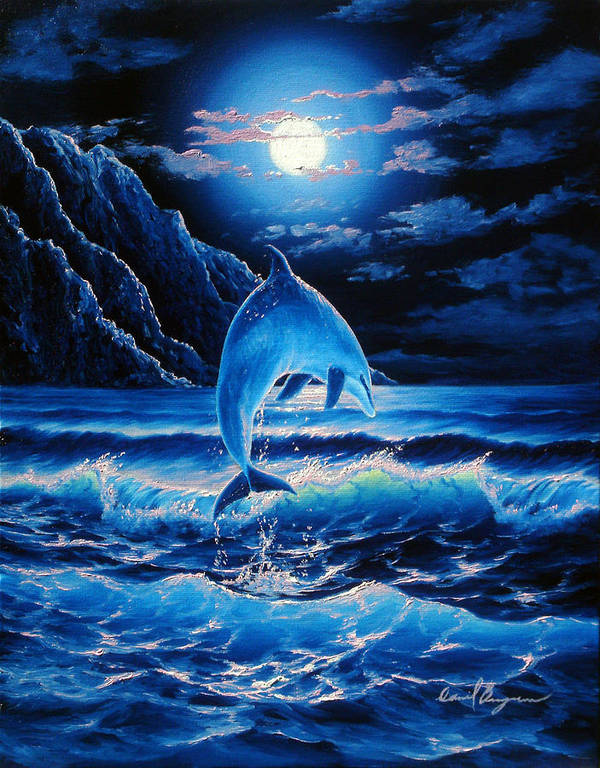 Dolphin Poster featuring the painting Midnight Play by Daniel Bergren