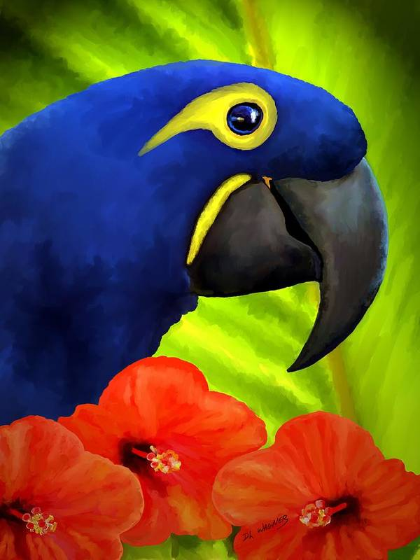 Hyacinth Macaw Poster featuring the painting Mimi by David Wagner