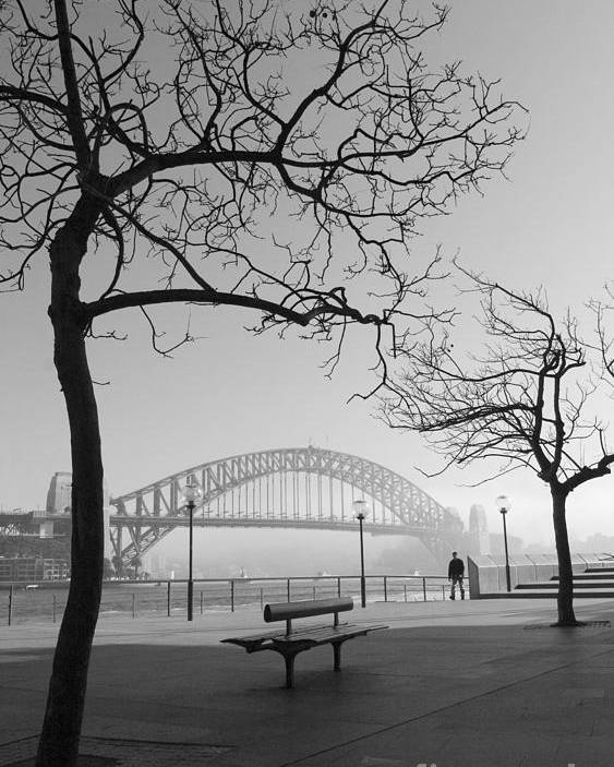 Sydney Harbour Bridge Mist Australia Poster featuring the photograph Misty Sydney morning by Sheila Smart Fine Art Photography