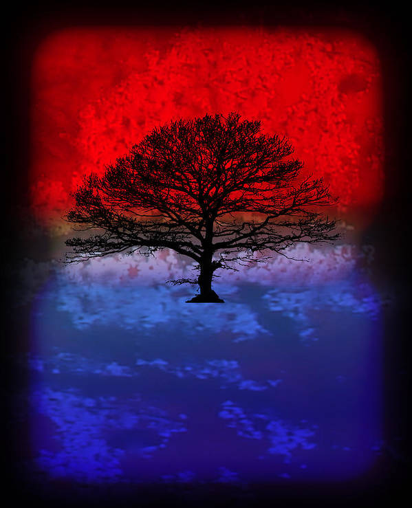 Modern Paintings Poster featuring the painting Modern Paintings Abstract Tree Wall Art by Robert R Splashy Art