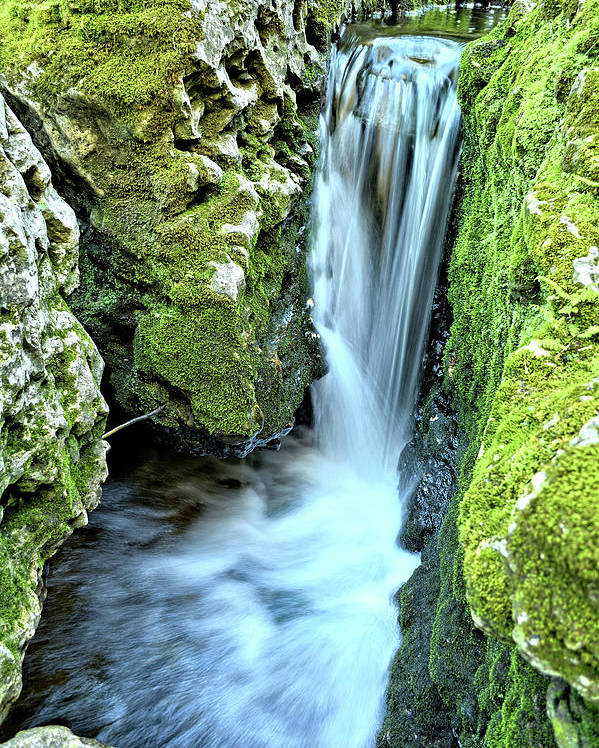 Mossy Poster featuring the photograph Moine Creek Goes Vertical by Bonfire Photography