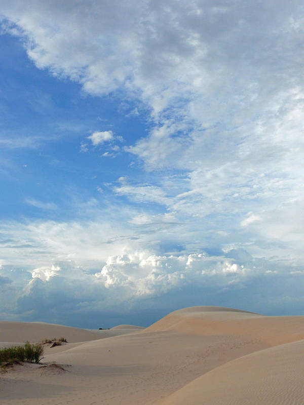 Sand Dunes Poster featuring the photograph Monahans Sand Dunes At Dusk by Mark Grayden