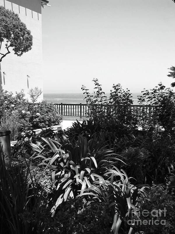 Ocean Poster featuring the photograph Monterey Gardens Overlooking The Bay by Amy Delaine