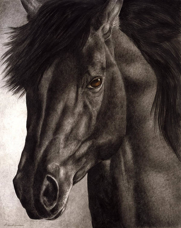 Horse Poster featuring the painting Moondark by Pat Erickson