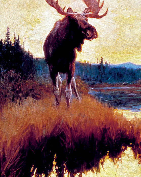 Moose Poster featuring the painting Moose Against Skyline by Phillip R Goodwin