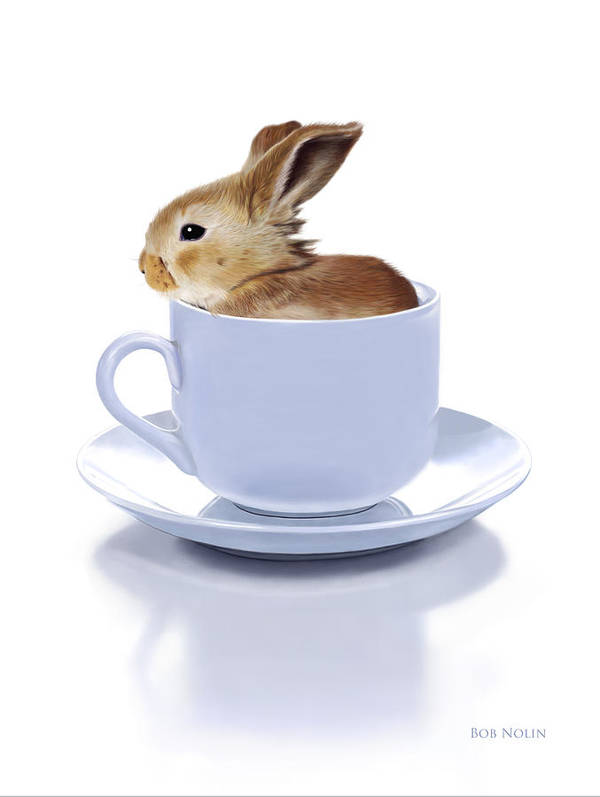Bunny Poster featuring the digital art Morning Bunny by Bob Nolin