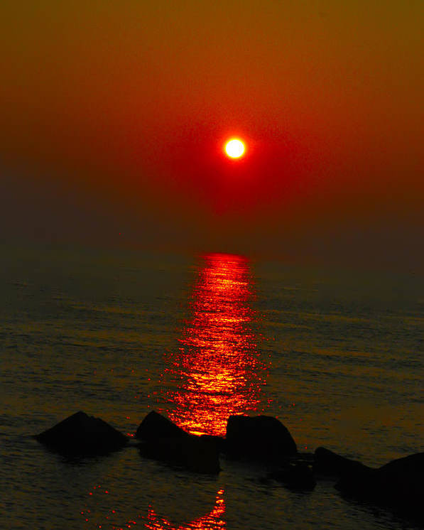 Sunrise Poster featuring the photograph Morning Reflection by Bill Cannon