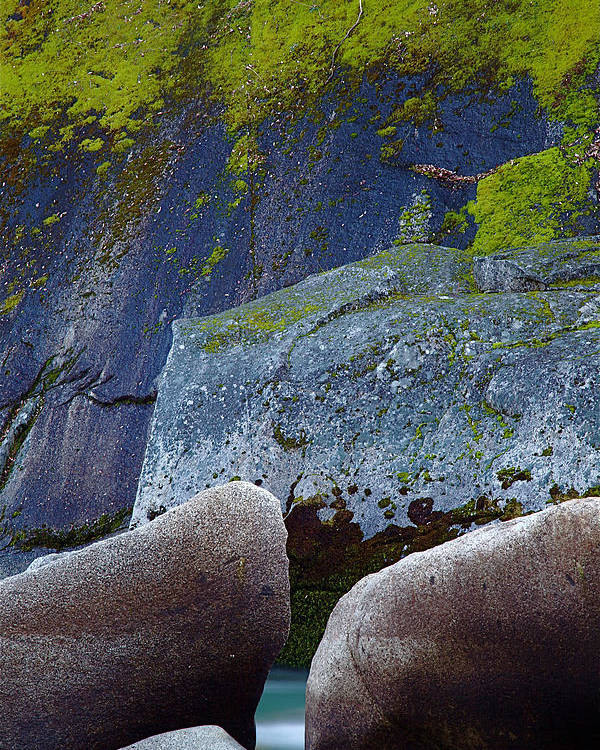 Yuba River Poster featuring the photograph Moss And Rocks by John Daly