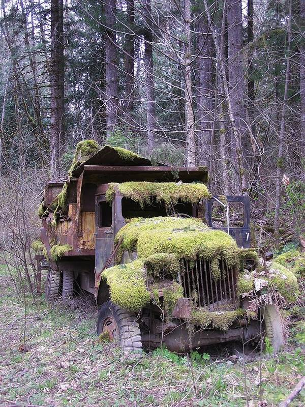 Truck Poster featuring the photograph Mossy Truck by Gene Ritchhart