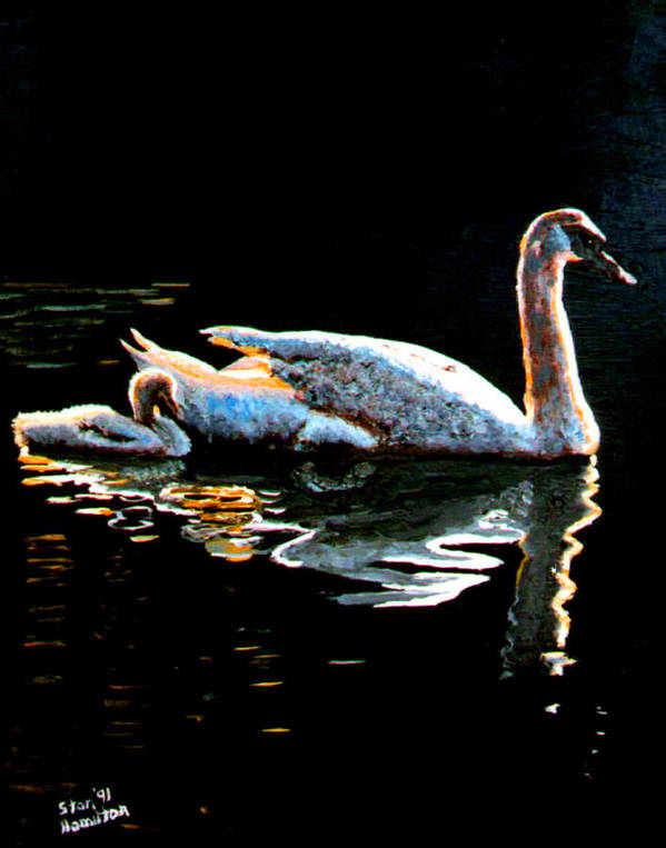 Swan Poster featuring the painting Mother and Baby Swan by Stan Hamilton