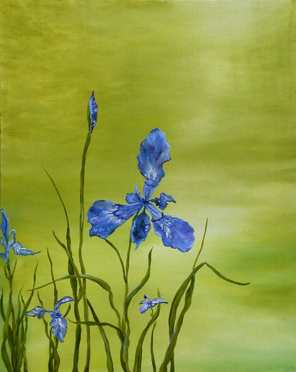 Floral Poster featuring the painting Mountain Iris by SheRok Williams