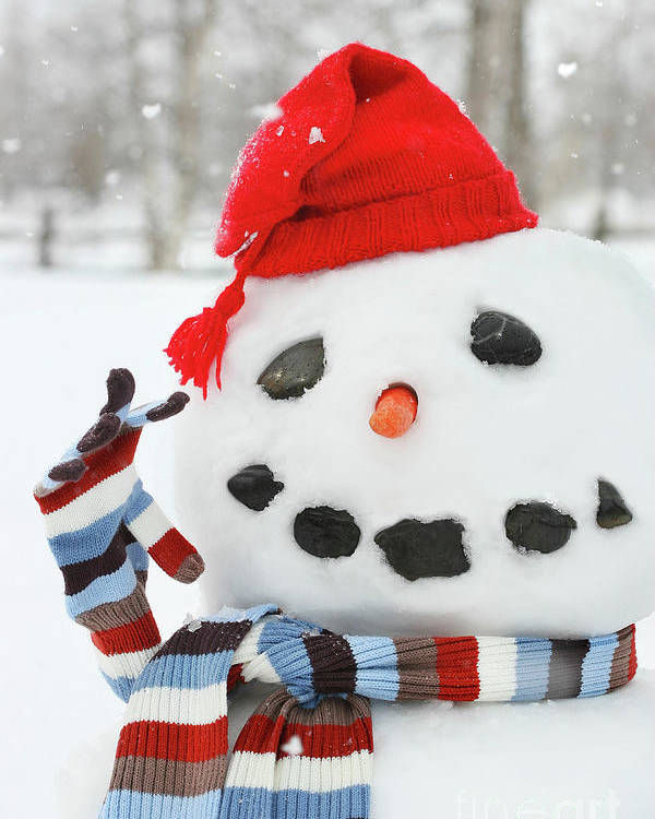 Background Poster featuring the photograph Mr. Snowman by Sandra Cunningham