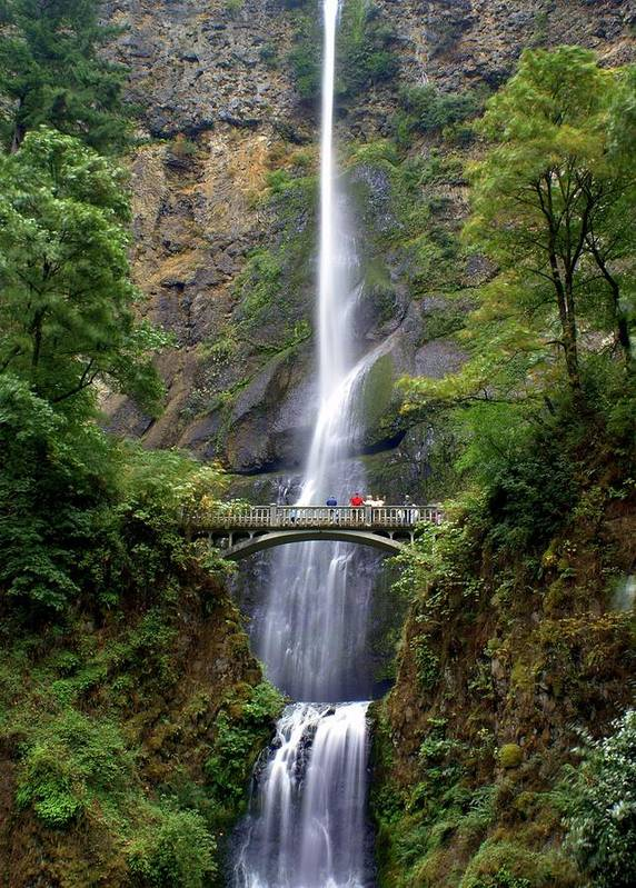 Waterfalls Poster featuring the photograph Multanomah Falls by Marty Koch