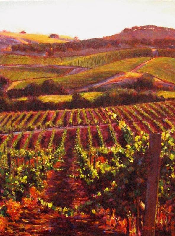 Wine Painting Poster featuring the painting Napa Carneros Summer Evening Light by Takayuki Harada