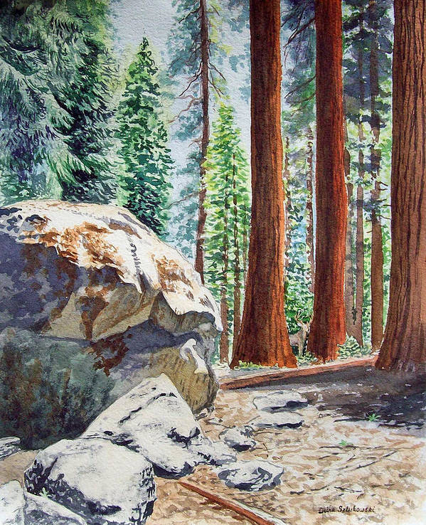 Sequoia Poster featuring the painting National Park Sequoia by Irina Sztukowski