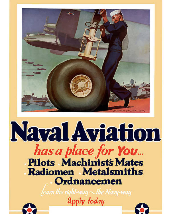 Navy Poster featuring the painting Naval Aviation Has A Place For You by War Is Hell Store