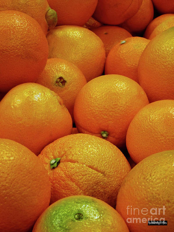 Navel Oranges Poster featuring the photograph Navel Oranges by Methune Hively
