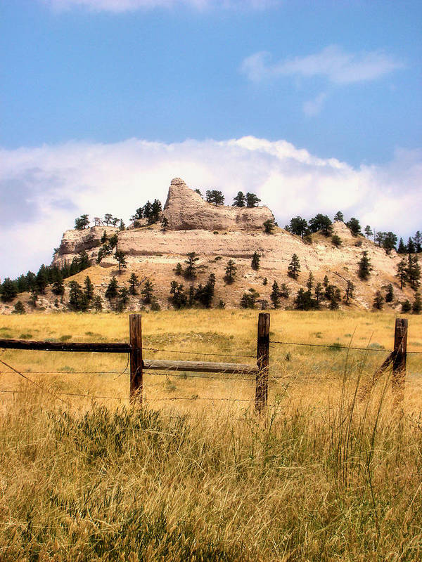 Plains Poster featuring the photograph Nebraska Buttes by Tingy Wende