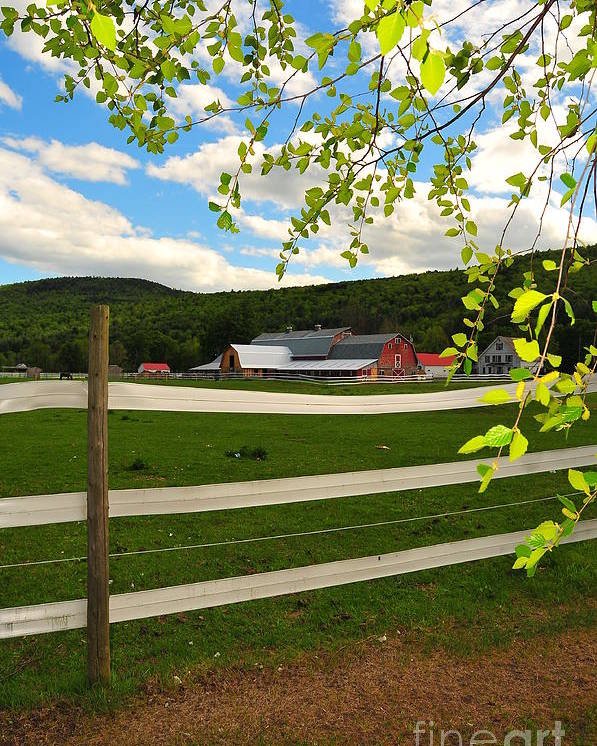 Agriculture Poster featuring the photograph New England Farm by Catherine Reusch Daley