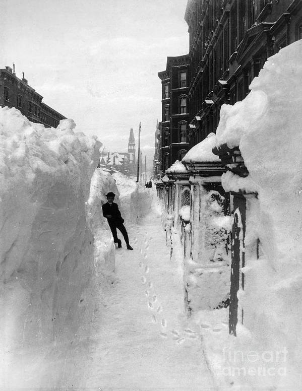 1888 Poster featuring the photograph New York: Blizzard Of 1888 by Granger
