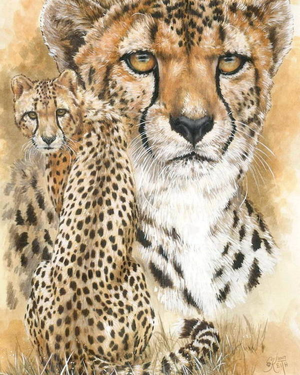 Cheetah Poster featuring the mixed media Nimble by Barbara Keith