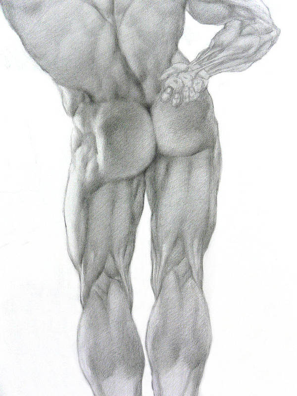 Nude Poster featuring the drawing Nude 2b by Valeriy Mavlo