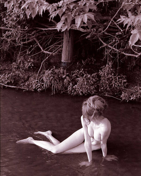 Fine Art Female Nude Figure Creek Study Naked Women Poster featuring the photograph Nude In Jack Creek by Randy Sprout