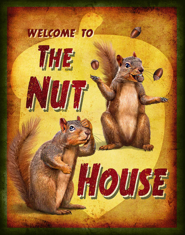 Wildlife Poster featuring the painting Nuthouse by JQ Licensing