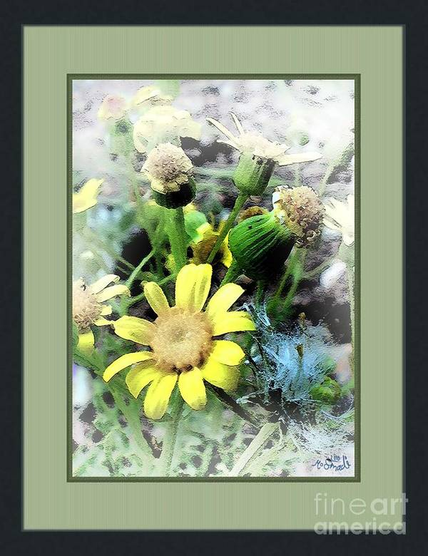Flowers Poster featuring the digital art Off Yellows by Mohd Smadi