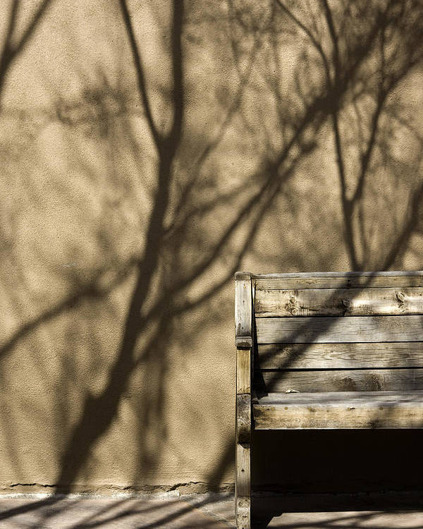 Photo Poster featuring the photograph Old Bench by Carmo Correia