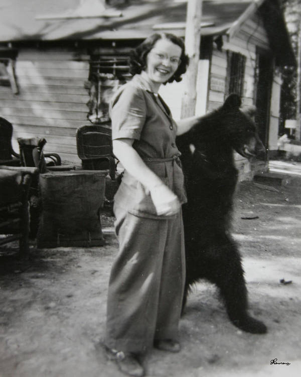 Bear Old Photo 1950s Wild Animal Bears Woman Black And White Antique Poster featuring the photograph Old Friends by Andrea Lawrence