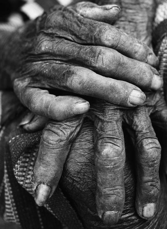 80-90 Yrs Poster featuring the photograph Old Hands 3 by Skip Nall