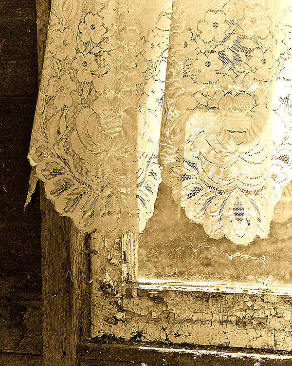 Lace Poster featuring the photograph Old Lace by Linda McRae
