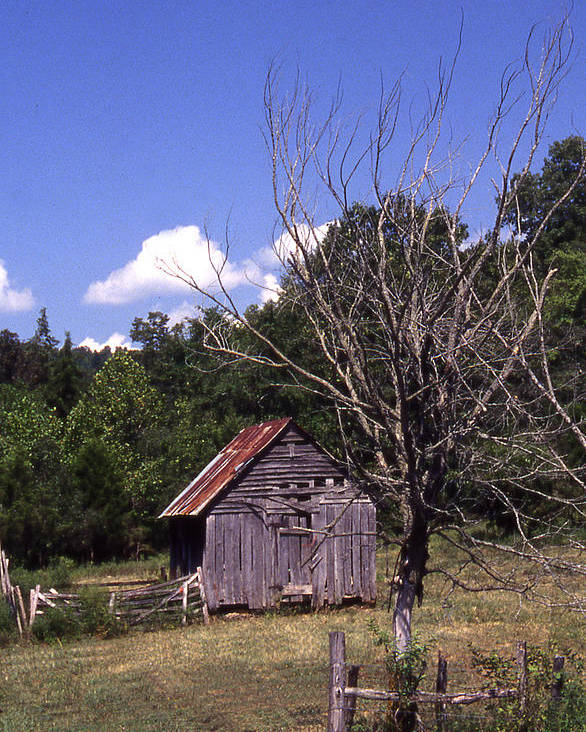Poster featuring the photograph Old Shack by Curtis J Neeley Jr