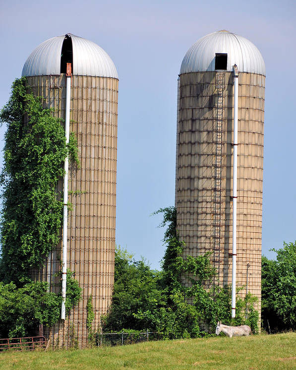 Landscapes Poster featuring the photograph Old Silos by Jan Amiss Photography