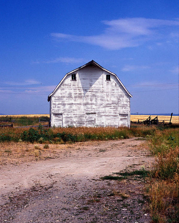 Barns Poster featuring the photograph Old White Barn by Kathy Yates