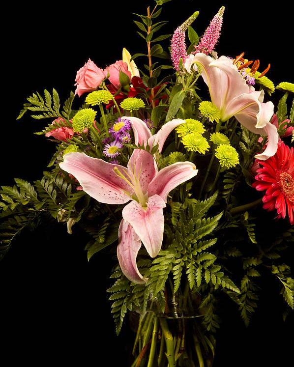 Flower Poster featuring the photograph Orchid Arrangement In Color by David Thompson