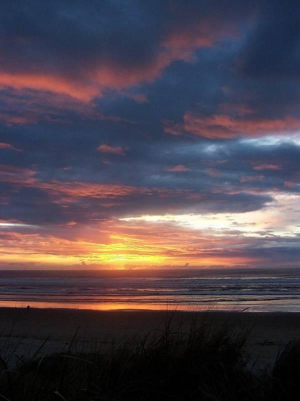 Beach Poster featuring the photograph Oregon Coast 11 by Deahn   Benware