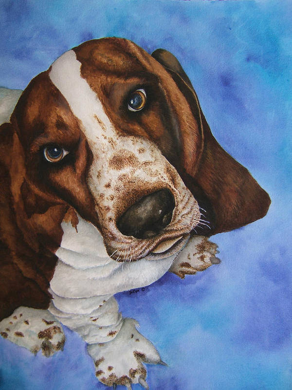 Basset Hound Dog Puppy Poster featuring the painting Otis The Basset Hound by JoLyn Holladay