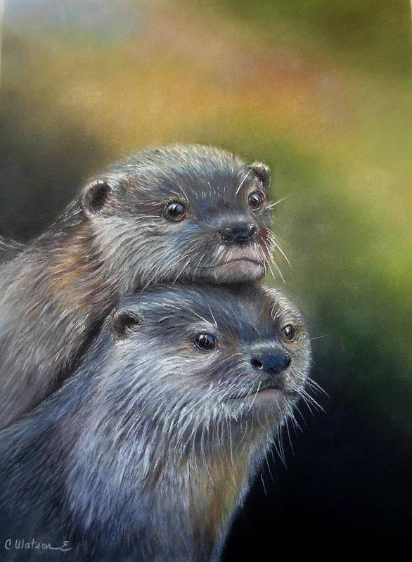 River Otter Poster featuring the painting Otter Be Two by Ceci Watson