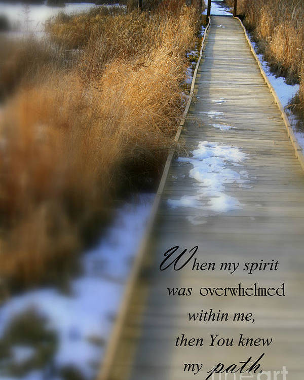 Scripture Poster featuring the photograph Overwhelmed by Debra Straub