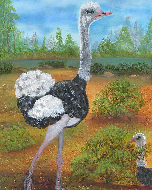 Ostrich Poster featuring the painting Ozzie and Harriet by Mikki Alhart