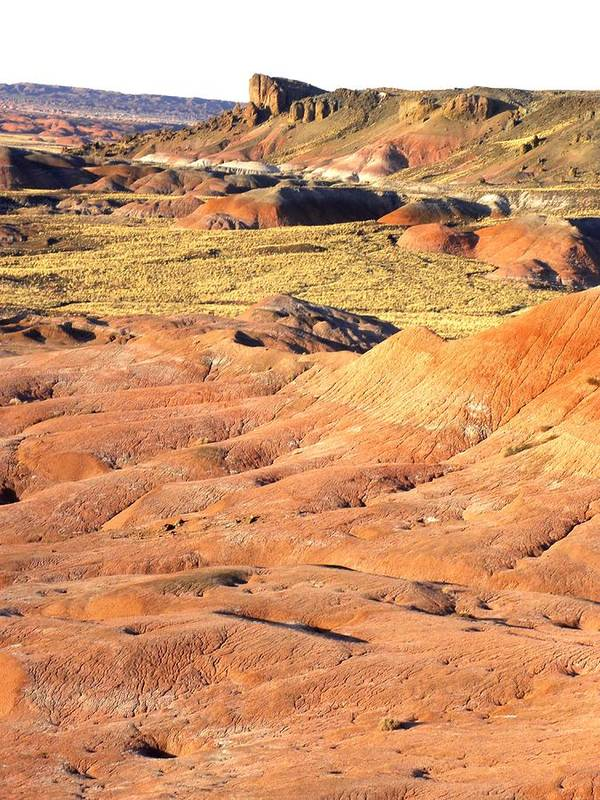 Photograph On Paper Poster featuring the photograph Painted Desert 1 by Patricia Bigelow