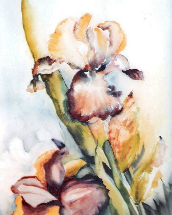 Painting Iris Flowers Floral Yellow Green Garden Poster featuring the painting Pale Iris by Marsha Woods