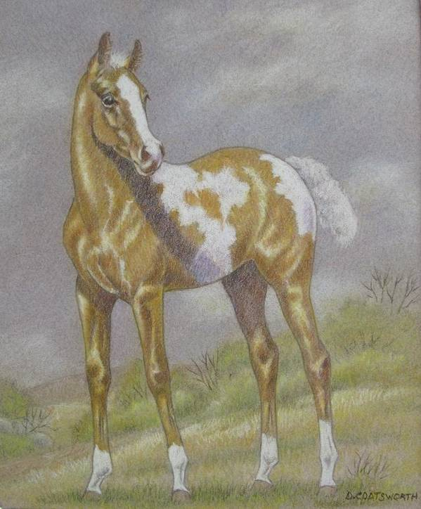 Paint Foal Poster featuring the pastel Palomino Paint Foal by Dorothy Coatsworth