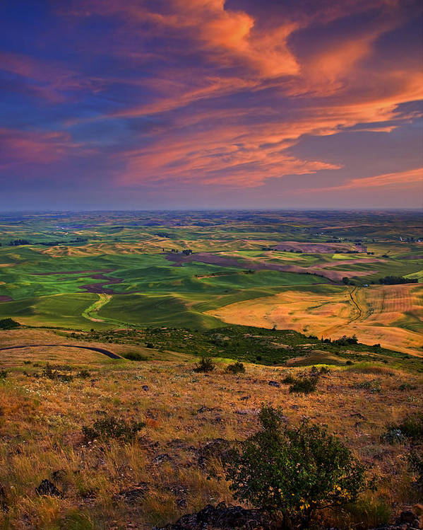 Palouse Poster featuring the photograph Palouse Skies Ablaze by Mike Dawson