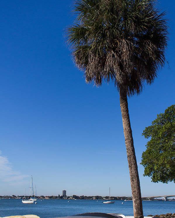 Marina Jacks Poster featuring the photograph Paradise In Sarasota, Fl by Michael Tesar