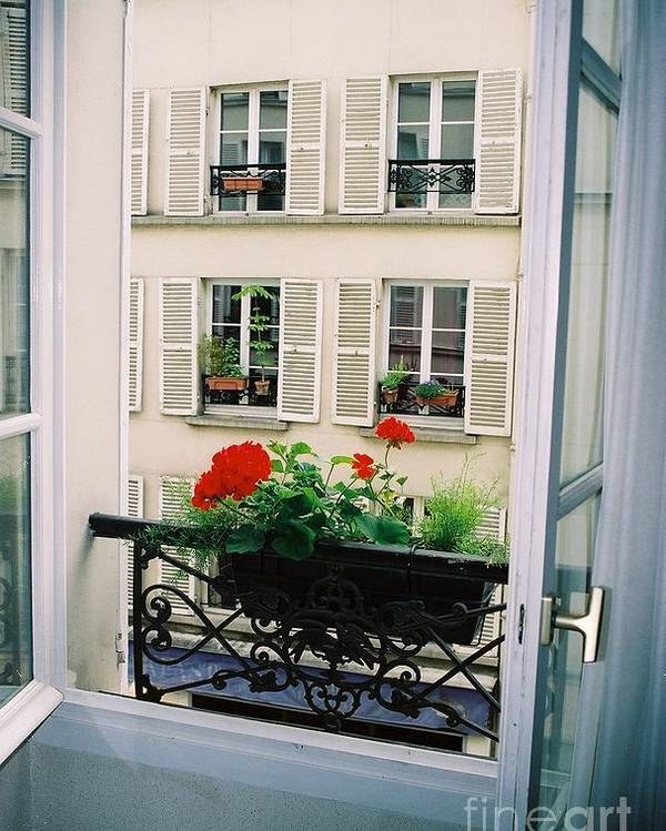 Window Poster featuring the photograph Paris Day Windowbox by Nadine Rippelmeyer