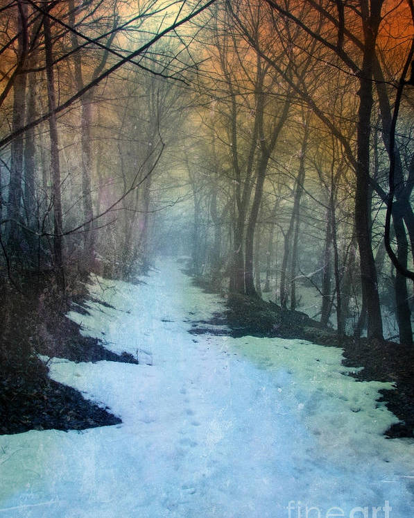 Path Poster featuring the photograph Path Through The Woods In Winter At Sunset by Jill Battaglia