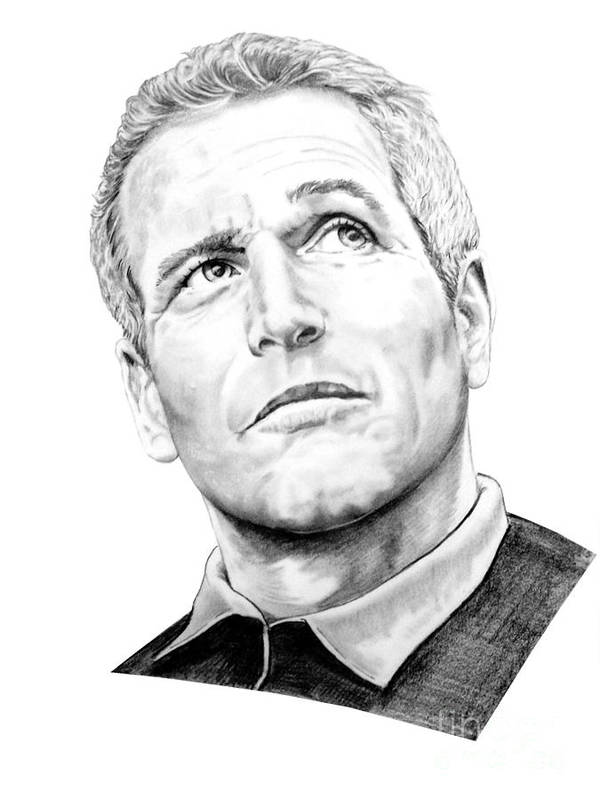 Paul Newman Poster featuring the drawing Paul Newman by Murphy Elliott